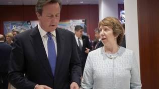 David Cameron, Catherine Ashton