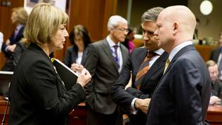 Vesna Pusic, William Hague