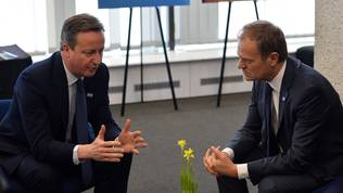 David Cameron, Donald Tusk