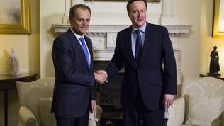 Donald Tusk, David Cameron